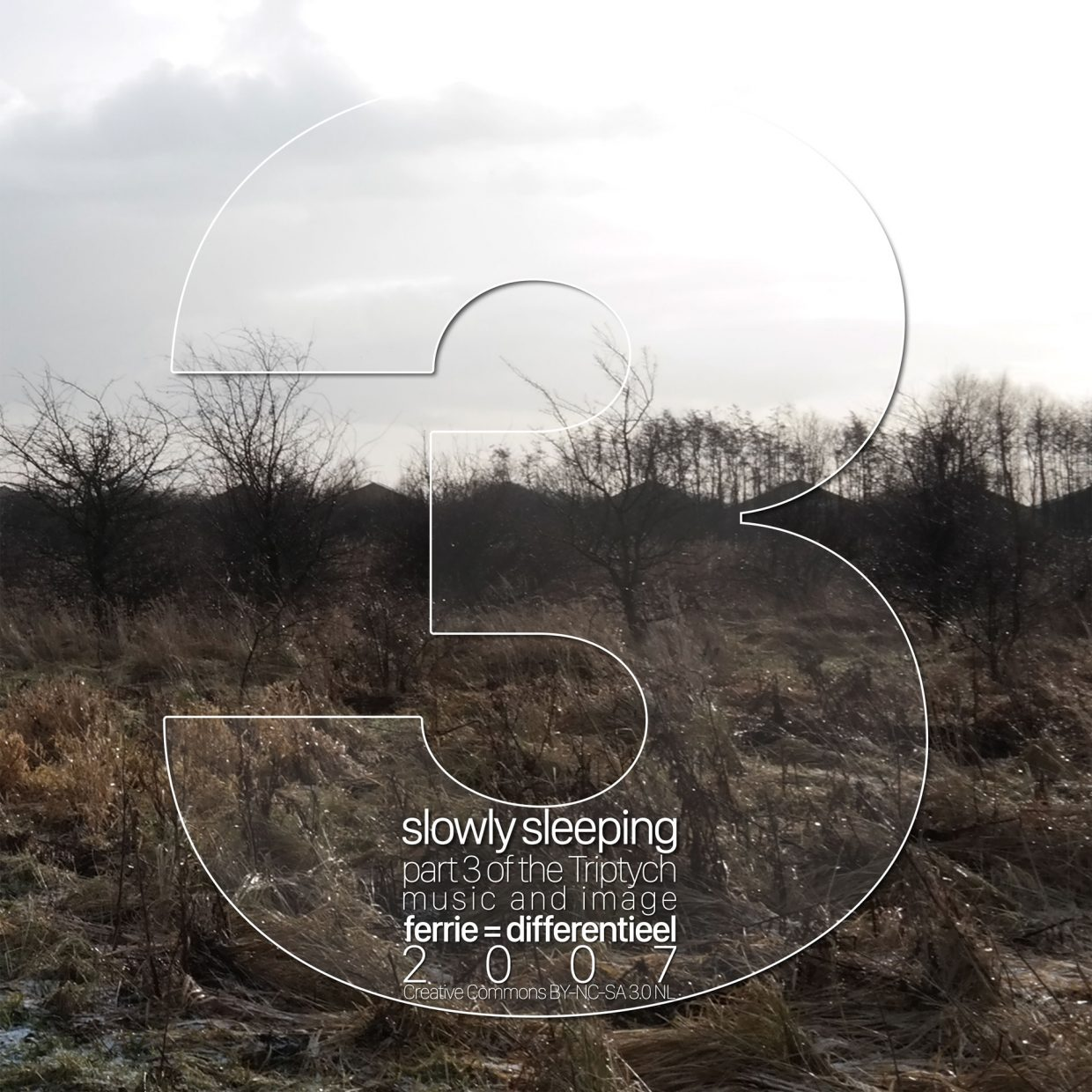 slowly sleeping cover