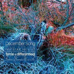 December Song | limietloos het jaar uit