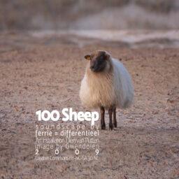 100 Sheep <br /> soundscape voor een kunstinstallatie van <br /> Ellen van Putten