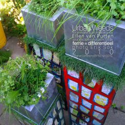 soundscape Urban Weeds | rumoer voor een kunstinstallatie | Ellen van Putten