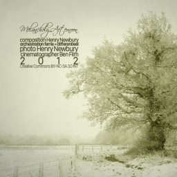 Melancholy Afternoon | samenwerkingsproject met | Henry Newbury