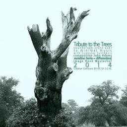 Tribute to the Trees </p> soundscape / cross-over </p> Henk Westerhof