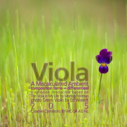 Viola <br /> A Miscalculated Ambient <br /> Morton Feldman