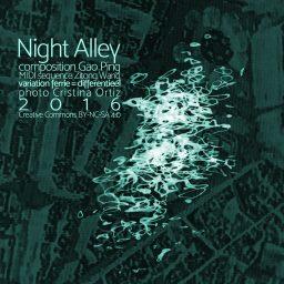 Night Alley <br /> naar een nieuw geluid <br /> Gao Ping