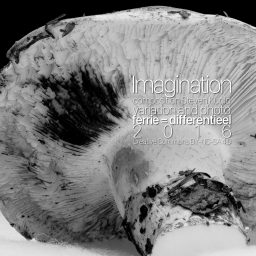 Imagination - ambient - Steven Kudlo