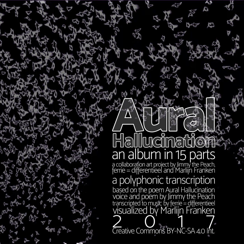 Aural Hallucination cover
