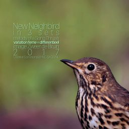 New Neighbird - de Zanglijster <br /> interpretatie in 3 delen <br /> Polyphonic Transcription