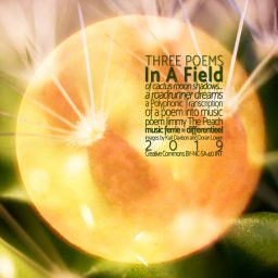 In A Field <br /> derde van de drie korte gedichten <br /> Jimmy The Peach