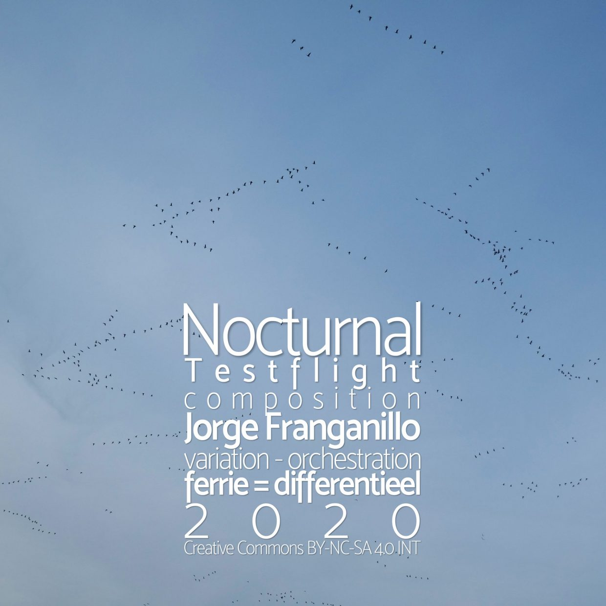 Nocturnal Testflight cover