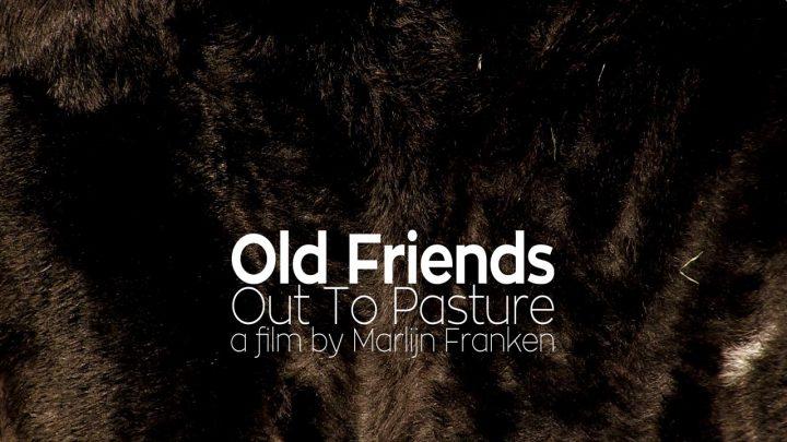 Old Friends still 01