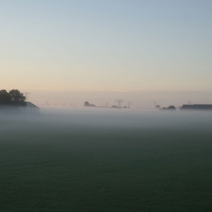 Mist-boven-het-weiland